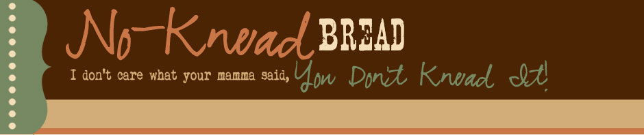 No-Knead Bread Blog - I Don't Care What Your Momma Said, You Don't Knead It!