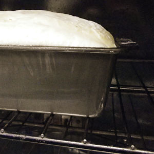 Oven Rising Your No-Knead Bread Dough