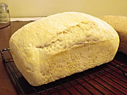White Sandwich Loaf No-Knead Bread